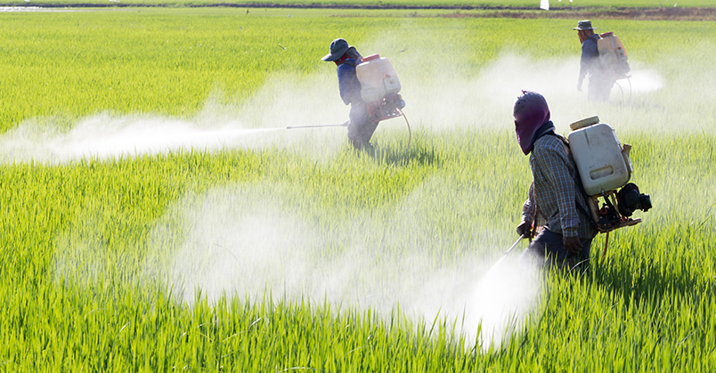 Spraying agricultural chemicals such as pesticide